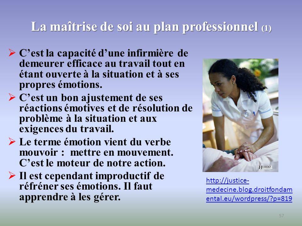 La maîtrise de soi au plan professionnel (1)