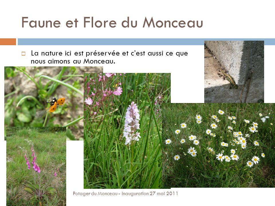 Faune et Flore du Monceau