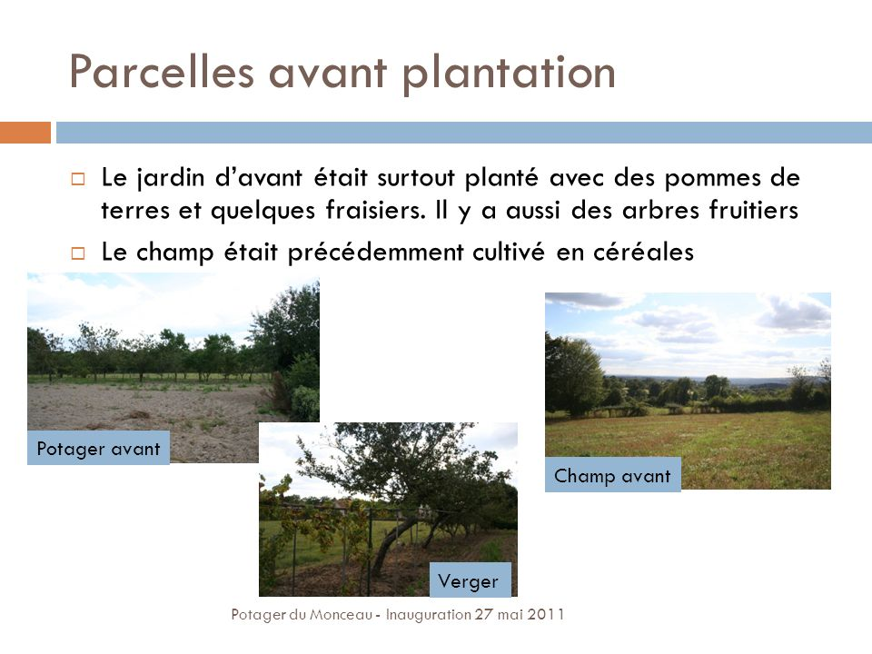 Parcelles avant plantation