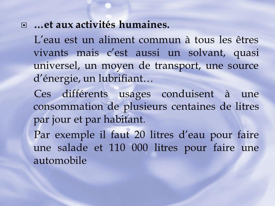 …et aux activités humaines.