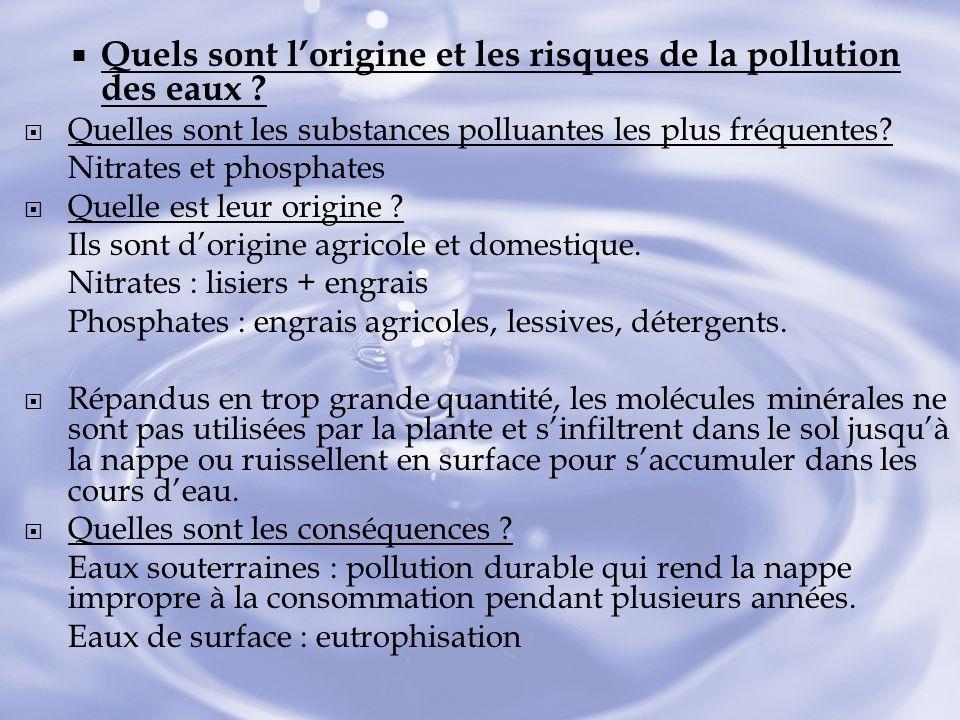 Quels sont l'origine et les risques de la pollution des eaux