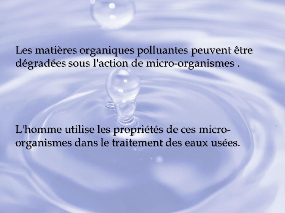 Les matières organiques polluantes peuvent être dégradées sous l action de micro-organismes .