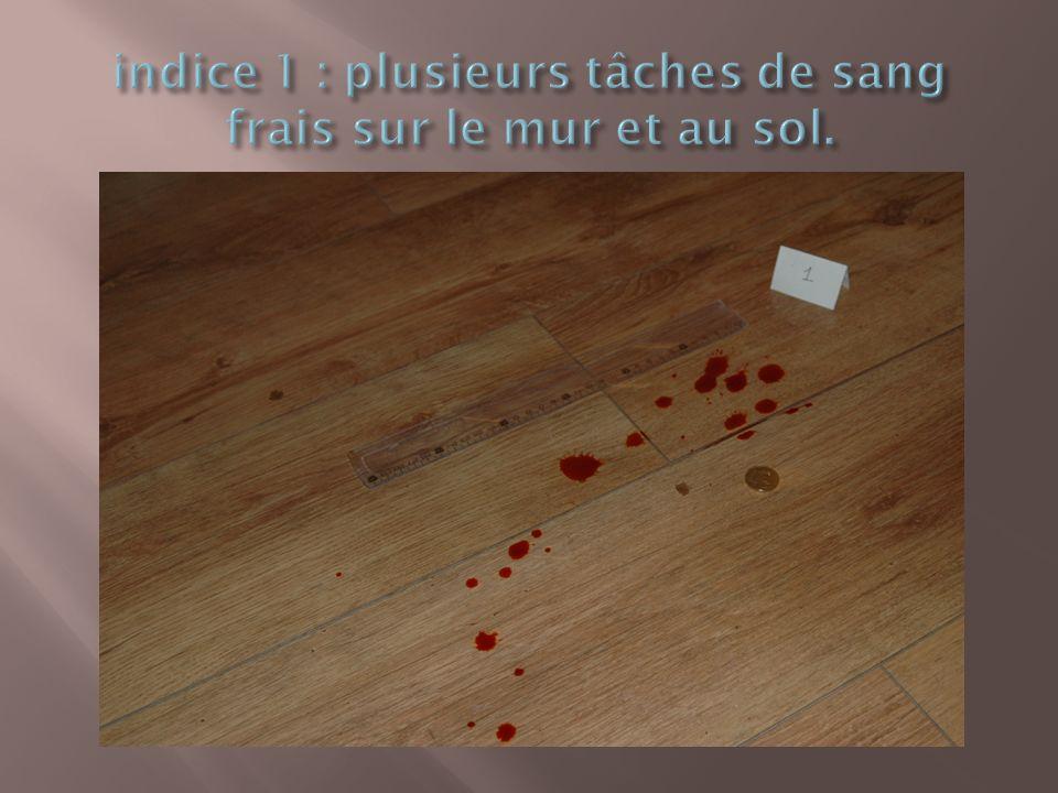 indice 1 : plusieurs tâches de sang frais sur le mur et au sol.