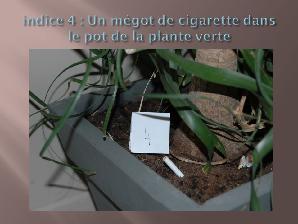 Science et investigation polici re ppt t l charger for La plante verte