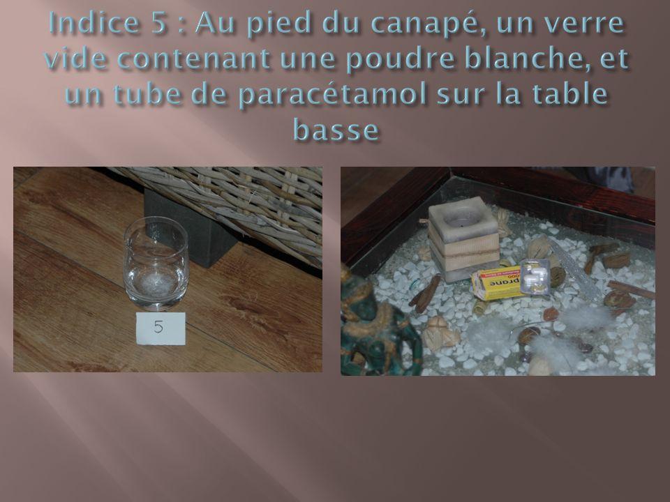 Indice 5 : Au pied du canapé, un verre vide contenant une poudre blanche, et un tube de paracétamol sur la table basse