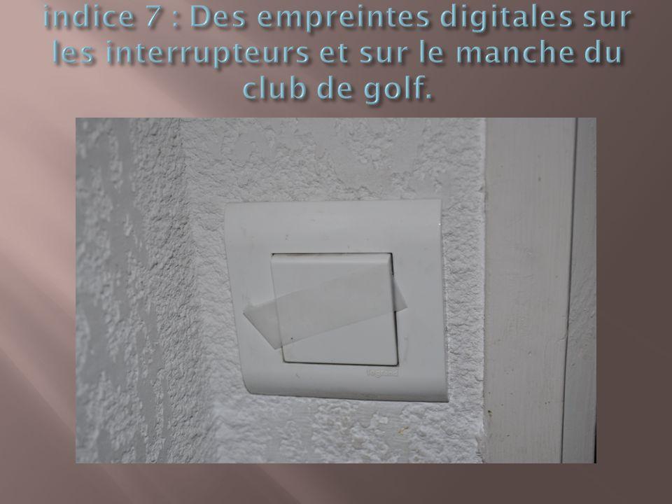 indice 7 : Des empreintes digitales sur les interrupteurs et sur le manche du club de golf.
