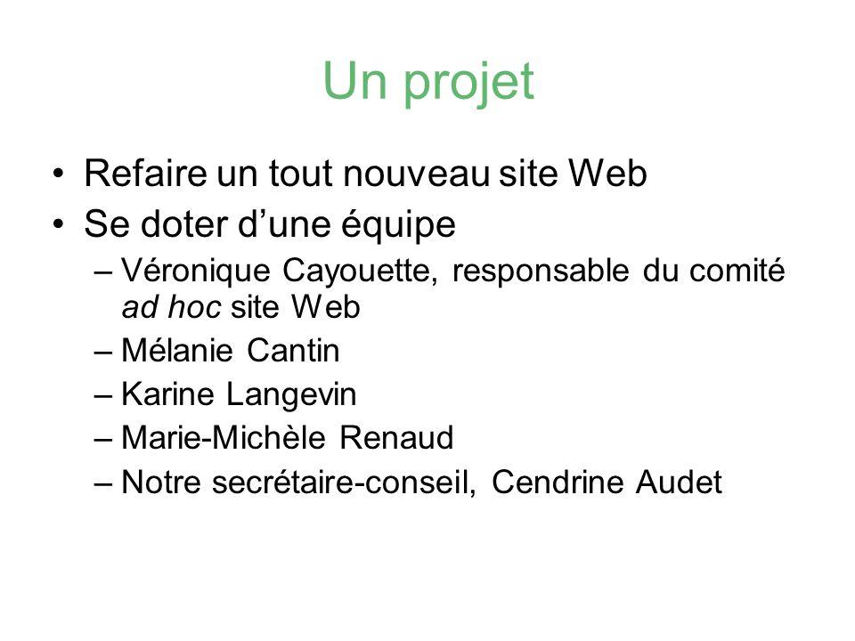 Un projet Refaire un tout nouveau site Web Se doter d'une équipe