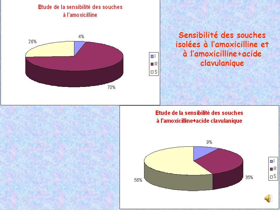 Sensibilité des souches isolées à l'amoxicilline et à l'amoxicilline+acide clavulanique