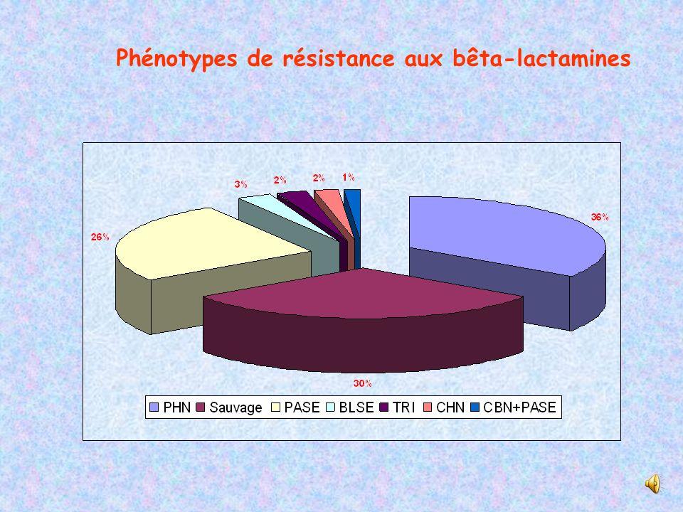 Phénotypes de résistance aux bêta-lactamines