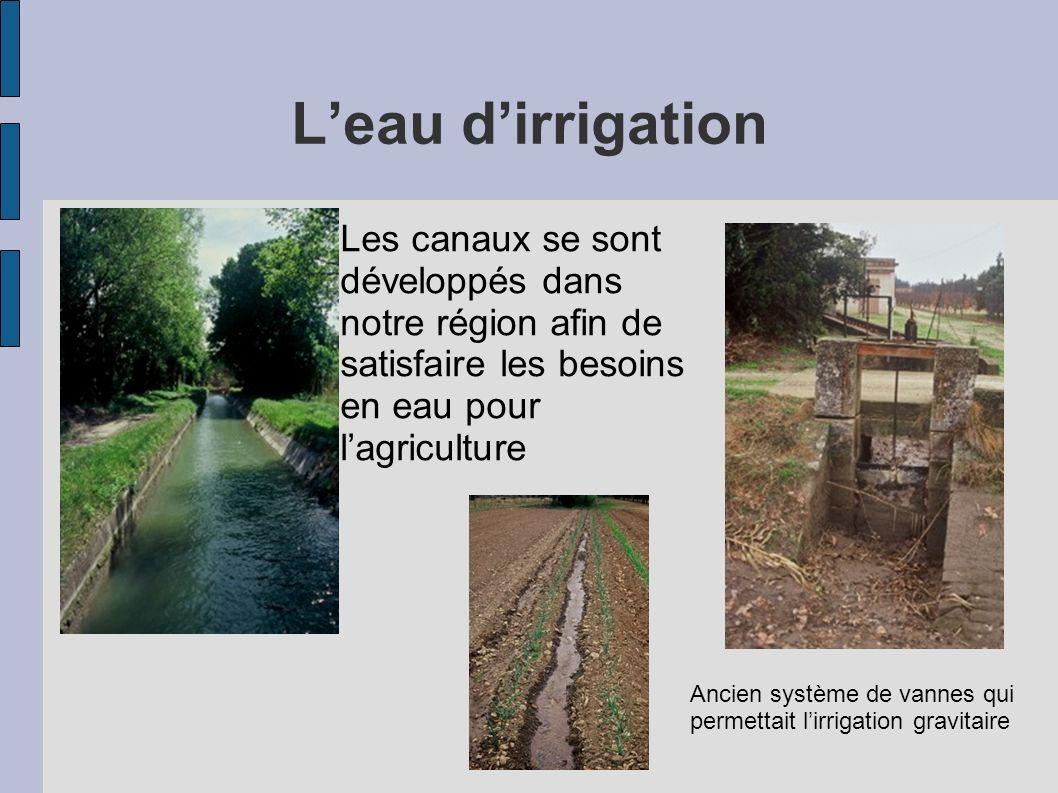 L'eau d'irrigation Les canaux se sont développés dans notre région afin de satisfaire les besoins en eau pour l'agriculture.