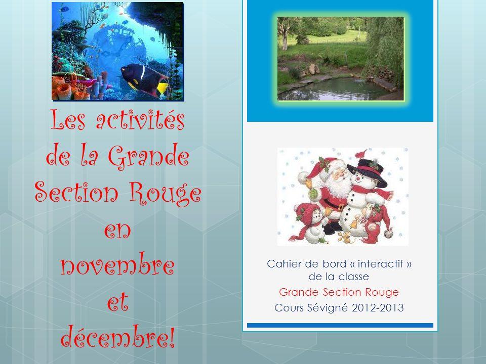 Les activités de la Grande Section Rouge en novembre et décembre!