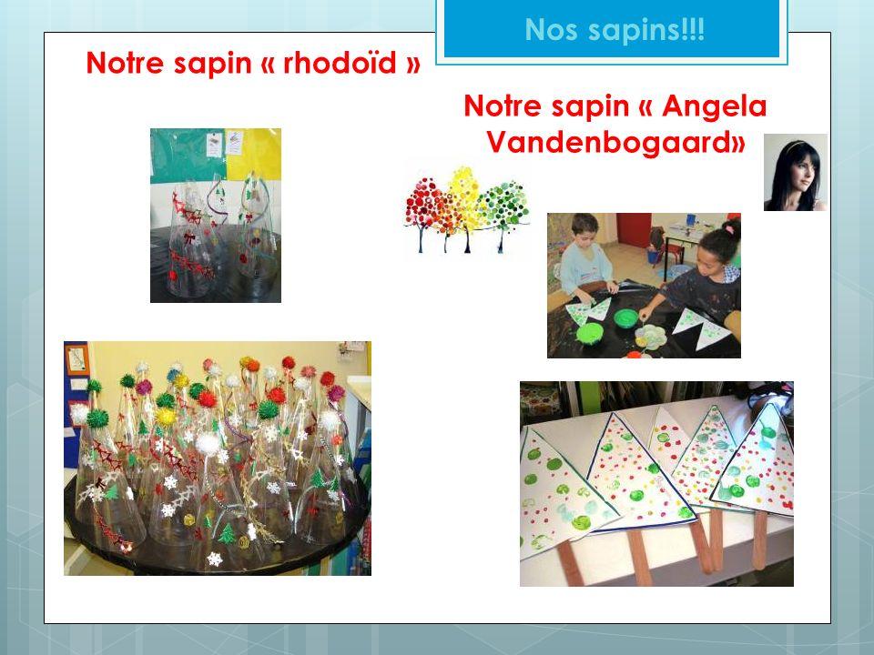 Notre sapin « Angela Vandenbogaard»