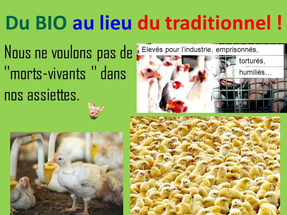 Du BIO au lieu du traditionnel !