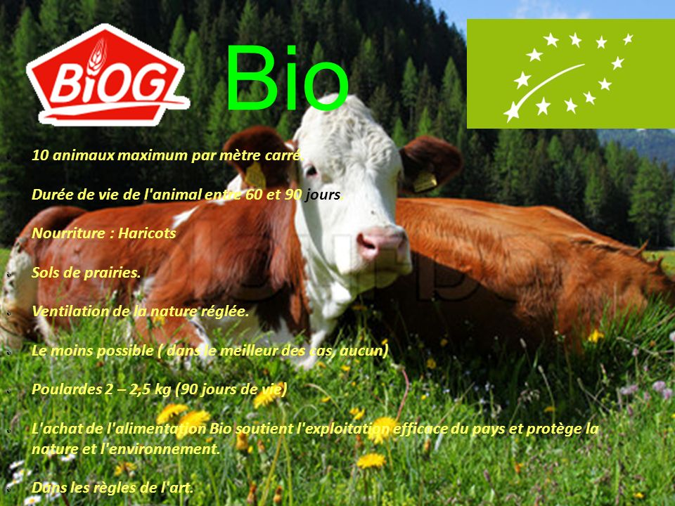 Bio 10 animaux maximum par mètre carré.