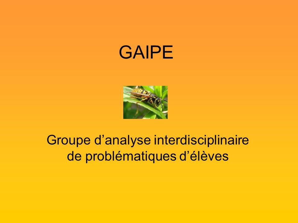 Groupe d'analyse interdisciplinaire de problématiques d'élèves
