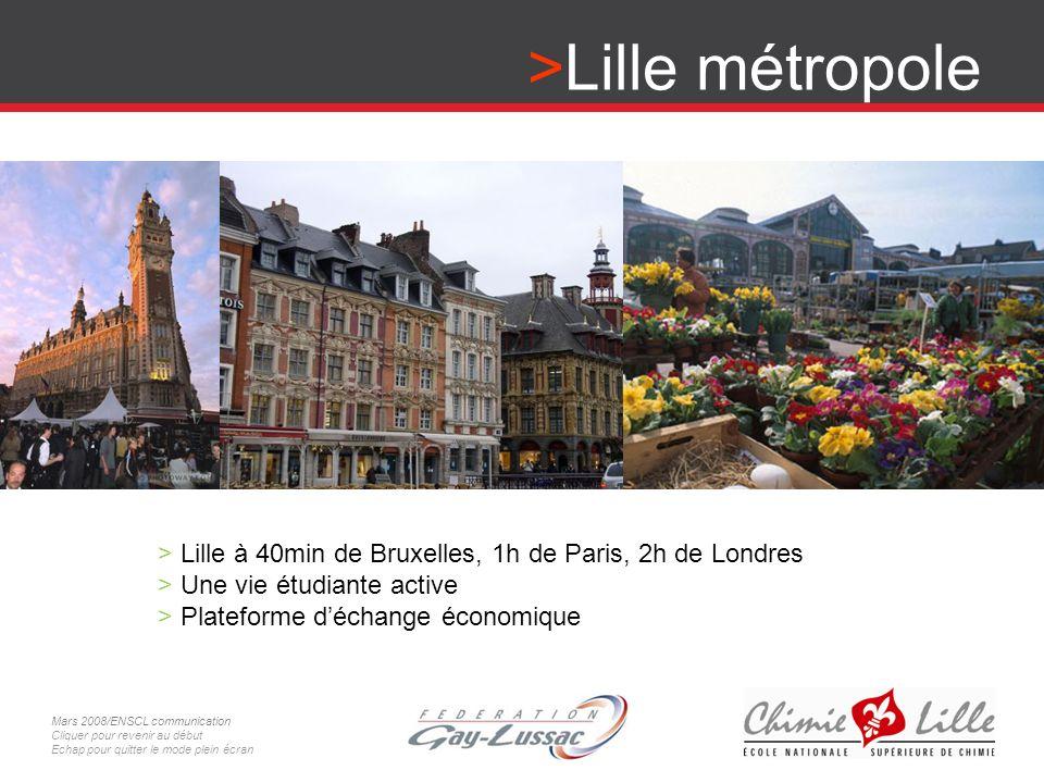 Lille métropole Lille à 40min de Bruxelles, 1h de Paris, 2h de Londres