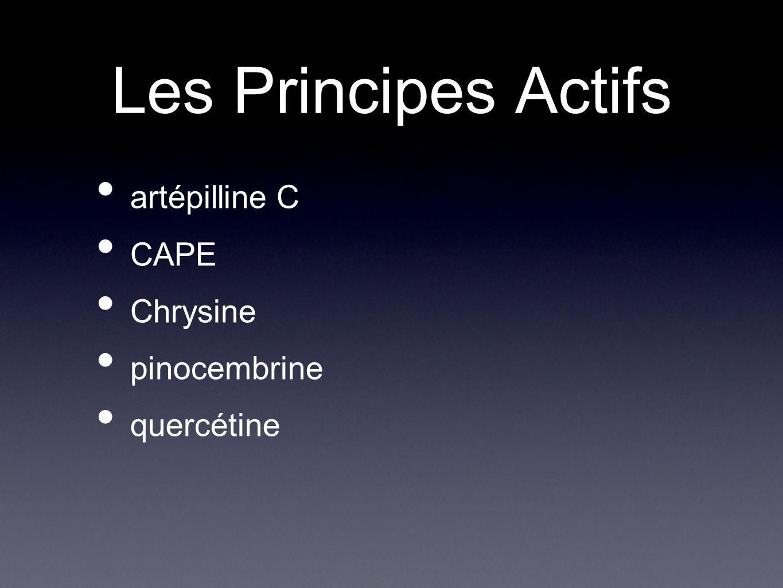 Les Principes Actifs artépilline C CAPE Chrysine pinocembrine