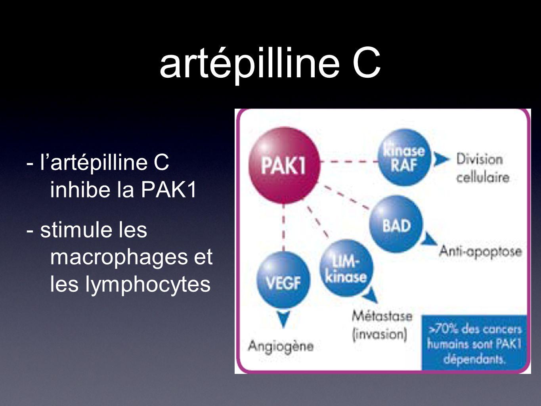 artépilline C - l'artépilline C inhibe la PAK1