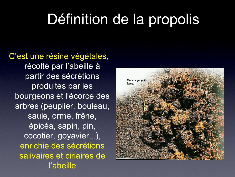 Définition de la propolis