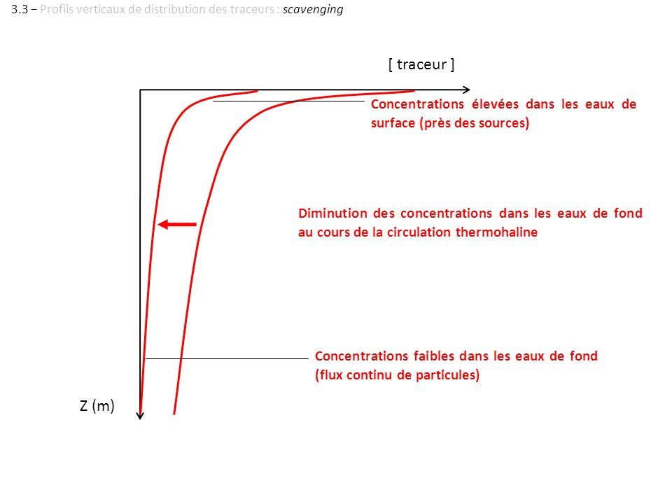 3.3 − Profils verticaux de distribution des traceurs : scavenging