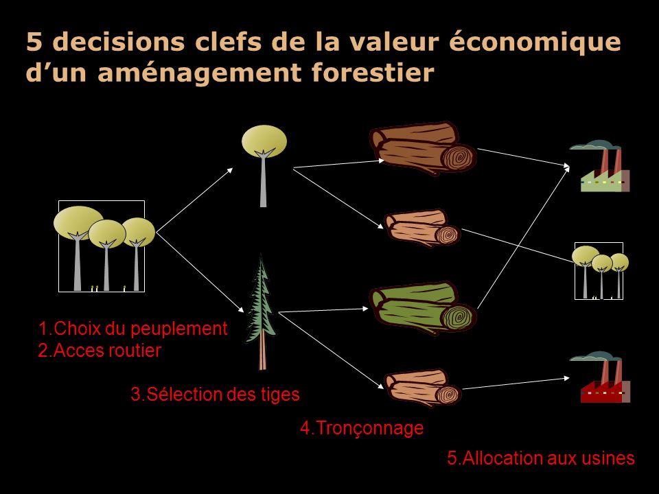 5 decisions clefs de la valeur économique d'un aménagement forestier