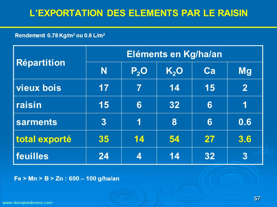 L'EXPORTATION DES ELEMENTS PAR LE RAISIN