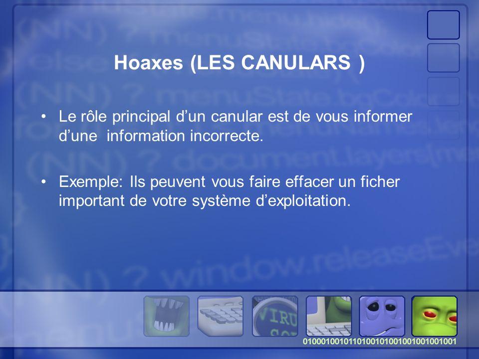 Hoaxes (LES CANULARS ) Le rôle principal d'un canular est de vous informer d'une information incorrecte.