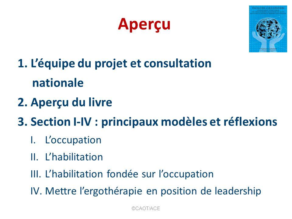 Aperçu 1. L'équipe du projet et consultation nationale