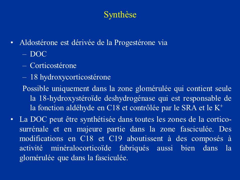 Synthèse Aldostérone est dérivée de la Progestérone via DOC