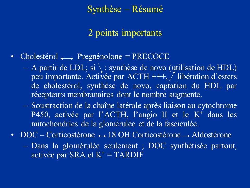 Synthèse – Résumé 2 points importants