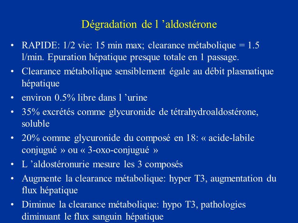 Dégradation de l 'aldostérone