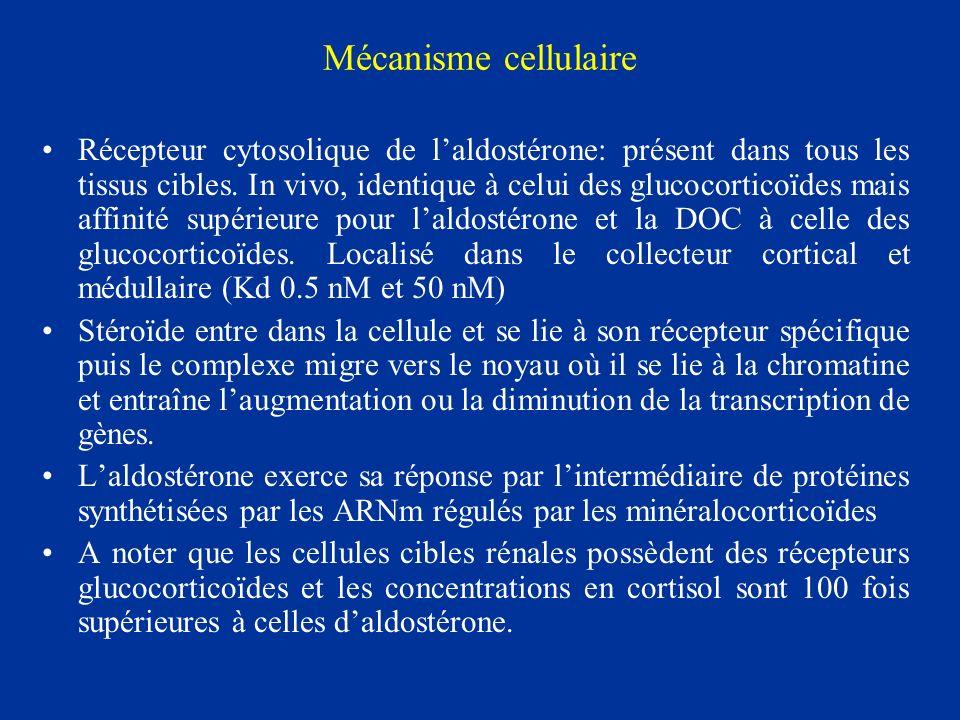 Mécanisme cellulaire