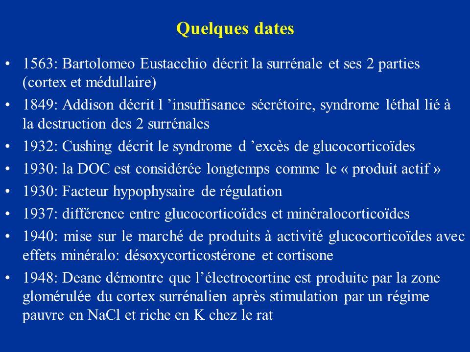 Quelques dates 1563: Bartolomeo Eustacchio décrit la surrénale et ses 2 parties (cortex et médullaire)