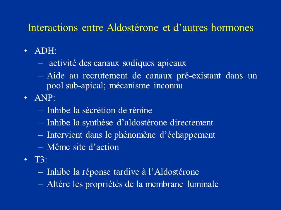 Interactions entre Aldostérone et d'autres hormones