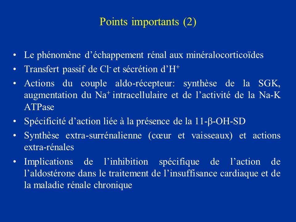 Points importants (2) Le phénomène d'échappement rénal aux minéralocorticoïdes. Transfert passif de Cl- et sécrétion d'H+