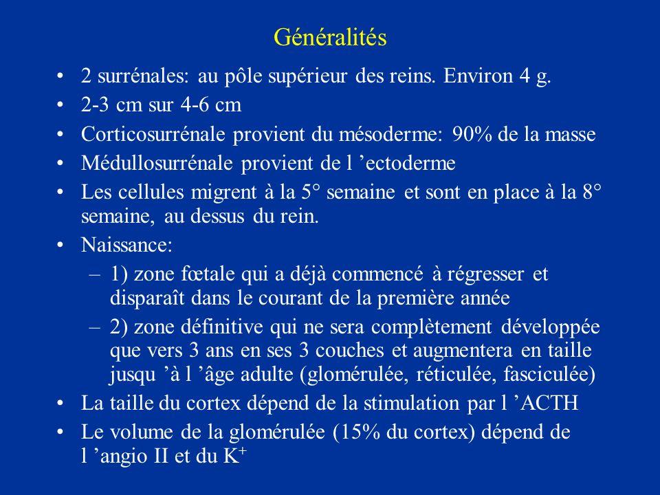 Généralités 2 surrénales: au pôle supérieur des reins. Environ 4 g.