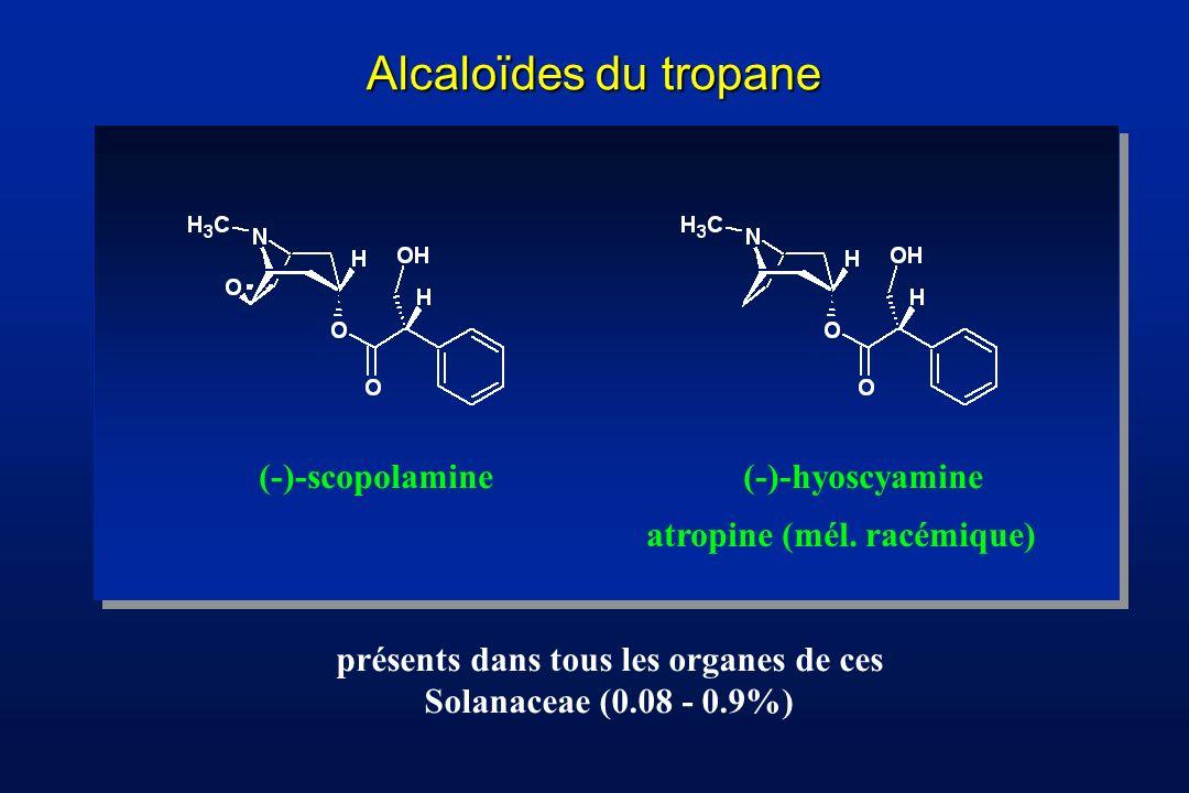 présents dans tous les organes de ces Solanaceae (0.08 - 0.9%)