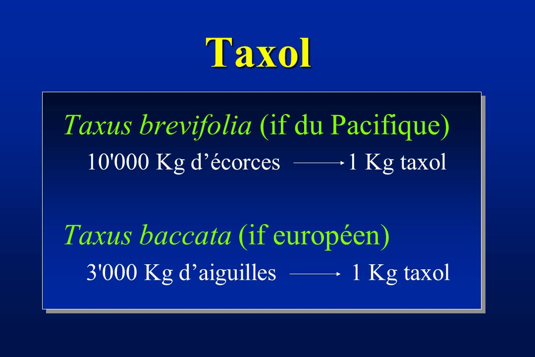 Taxol Taxus brevifolia (if du Pacifique) Taxus baccata (if européen)