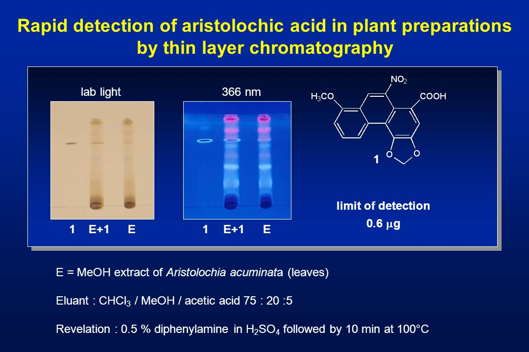 Rapid detection of aristolochic acid in plant preparations