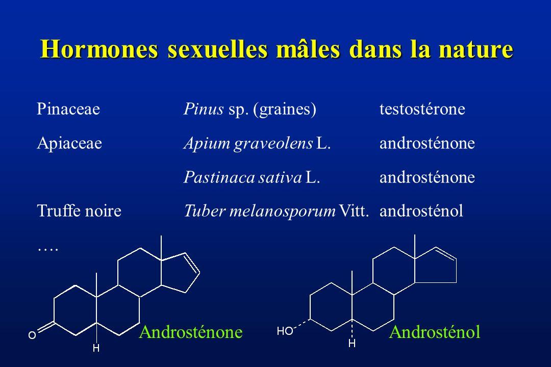 Hormones sexuelles mâles dans la nature