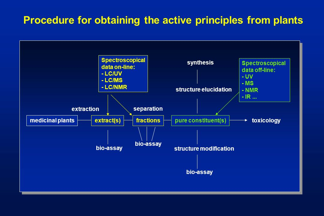 Procedure for obtaining the active principles from plants