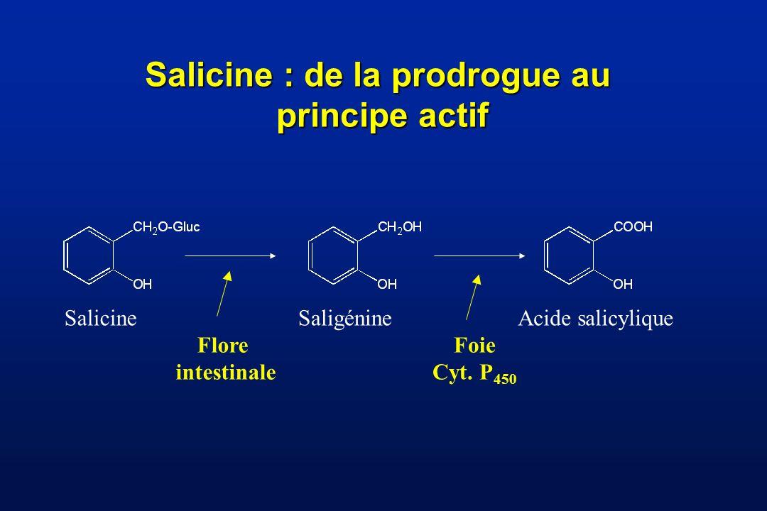 Salicine : de la prodrogue au
