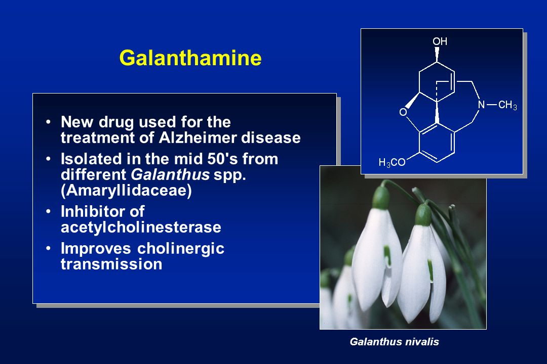Galanthamine New drug used for the treatment of Alzheimer disease