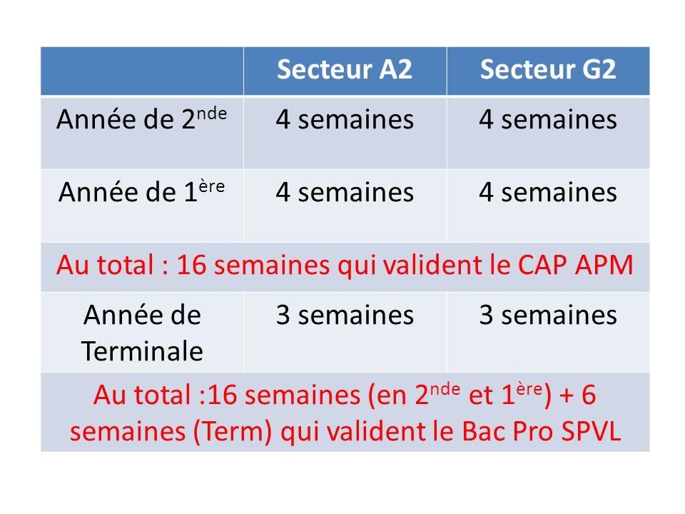 Au total : 16 semaines qui valident le CAP APM