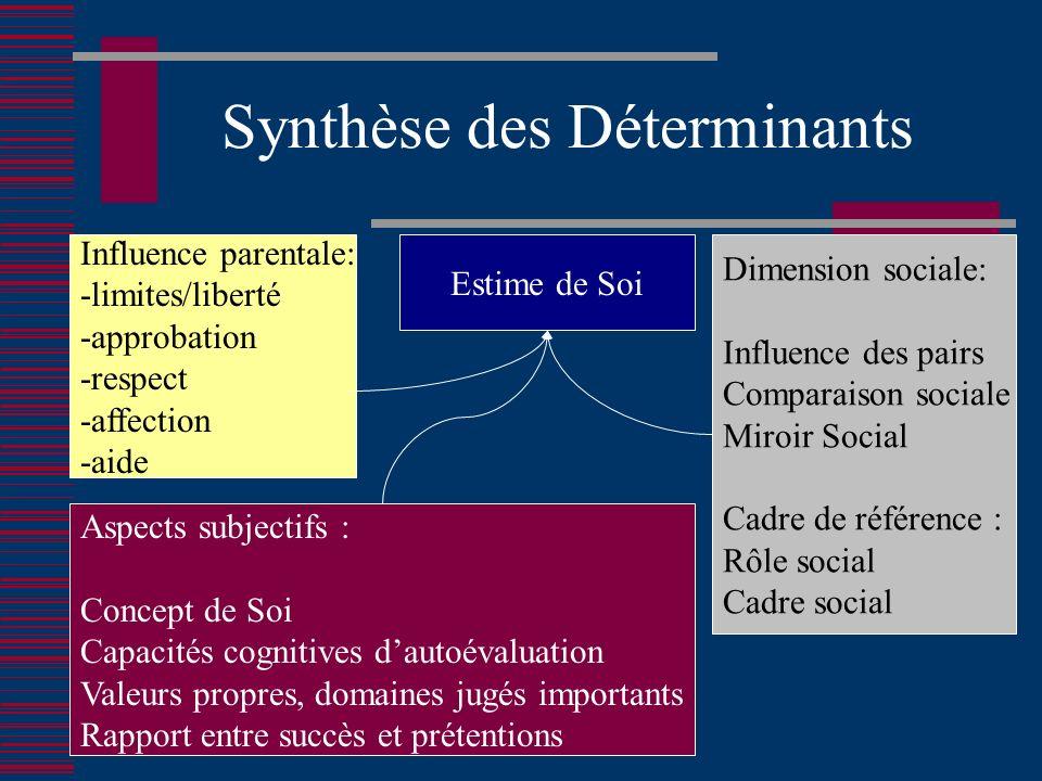 Synthèse des Déterminants