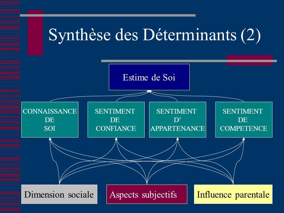 Synthèse des Déterminants (2)