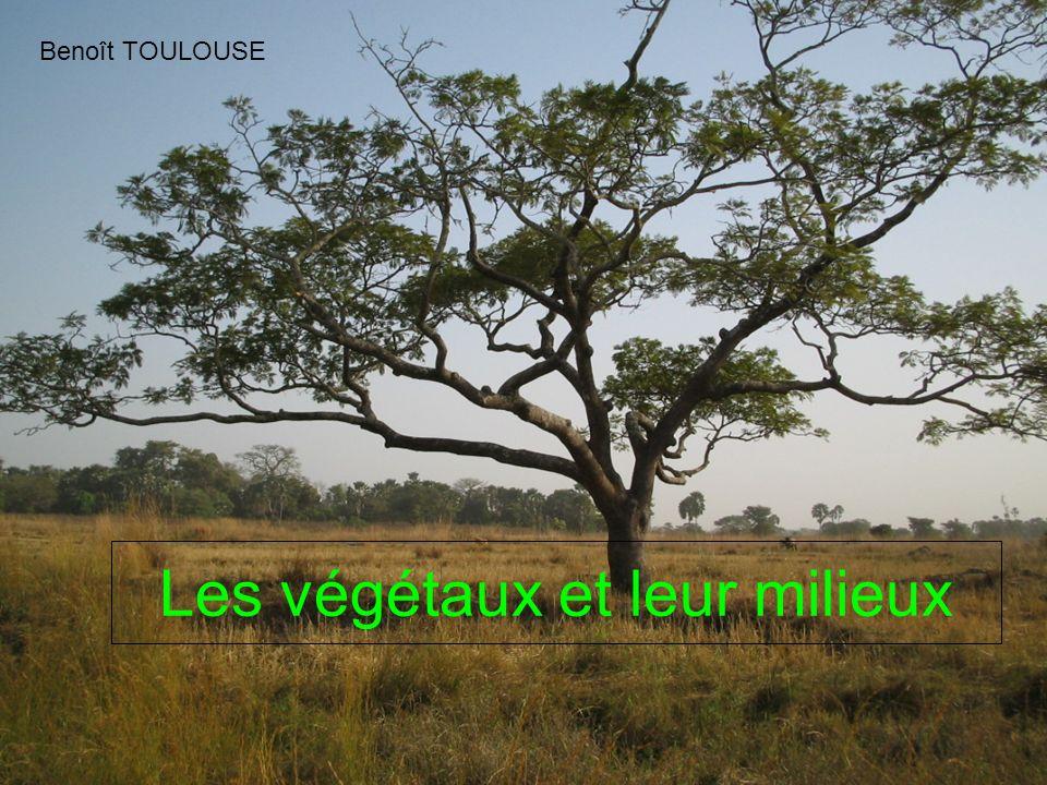 Les végétaux et leur milieux