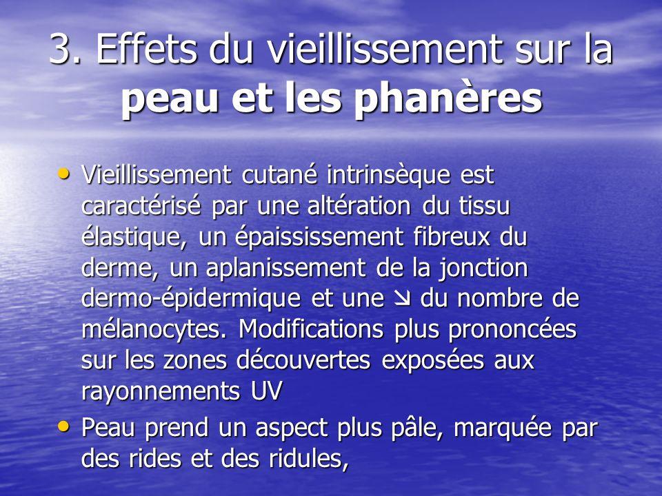 3. Effets du vieillissement sur la peau et les phanères