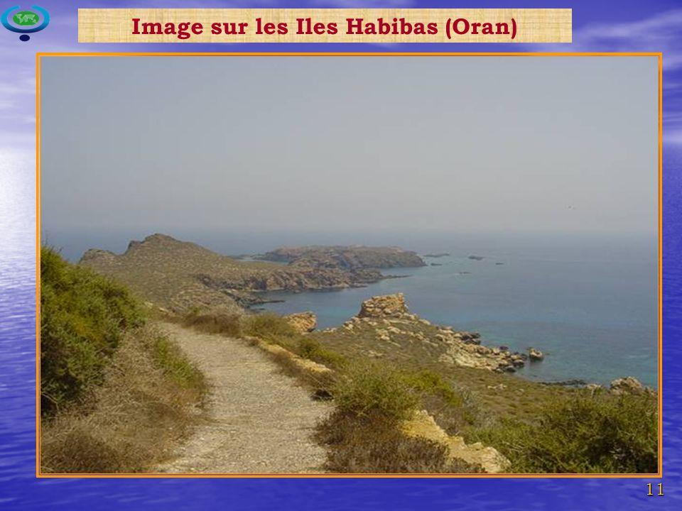 Image sur les Iles Habibas (Oran)