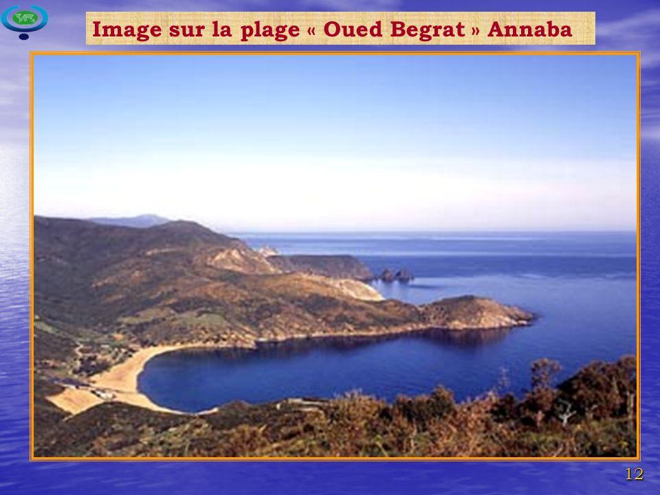 Image sur la plage « Oued Begrat » Annaba